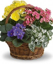 A variety of blooming plants in a wicker handbasket.