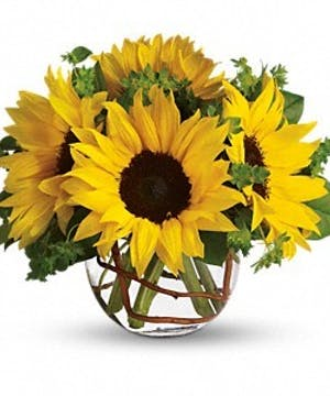 Sunflowers, orange spray roses, curly willow and salal in a charming ball vase.