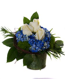 White roses and blue hydrangea in a tin container accented with ficus root