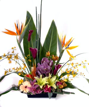 Tropical flower arrangement in a unique container.