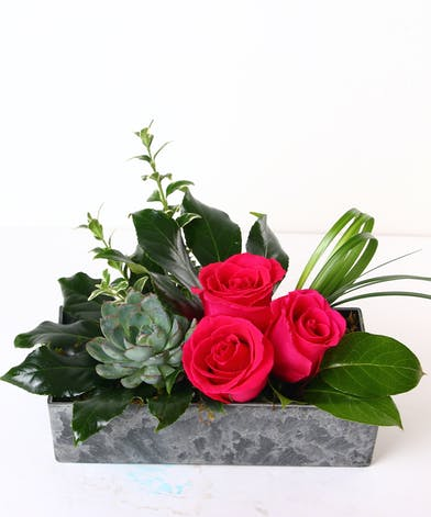 Hot pink roses and a succulent in a charming container.
