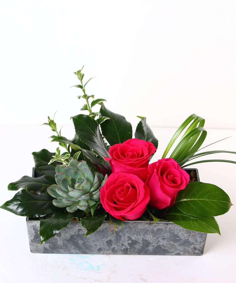 Pretty Please Hot Pink Flowers Ny Same Day Delivery