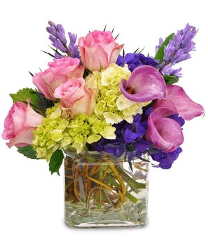 Clear glass cube vase filled with pink roses, purple and green hydrangea and curly willow