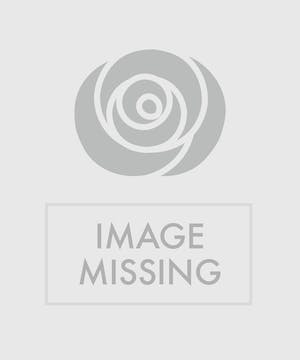 Blue, green and yellow flowers in a clear glass vase.