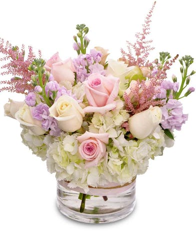 Roses, hydrangea and stock in a glass cylinder vase.