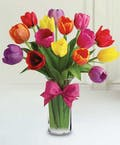 Mixed Spring Tulips