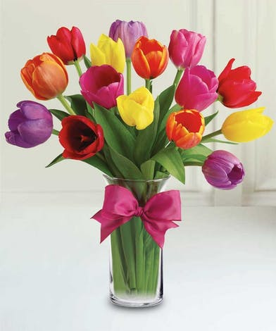 Bouquet of mixed colored spring tulips