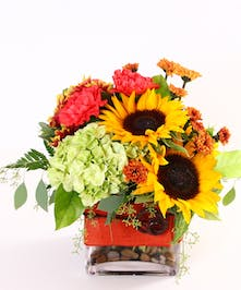 Glass cube of sunflowers, hydrangea and other fall flowers tied with orange ribbon.