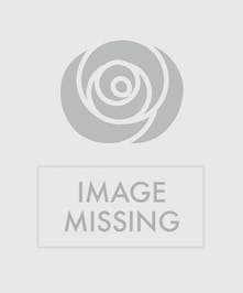 Blue hydrangea plant in a wicker basket.