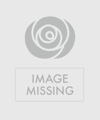 Blue hydrangea plant in a wicker basket.