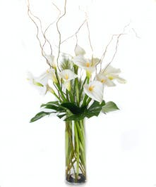 Premium white calla lilies in a glass vase.