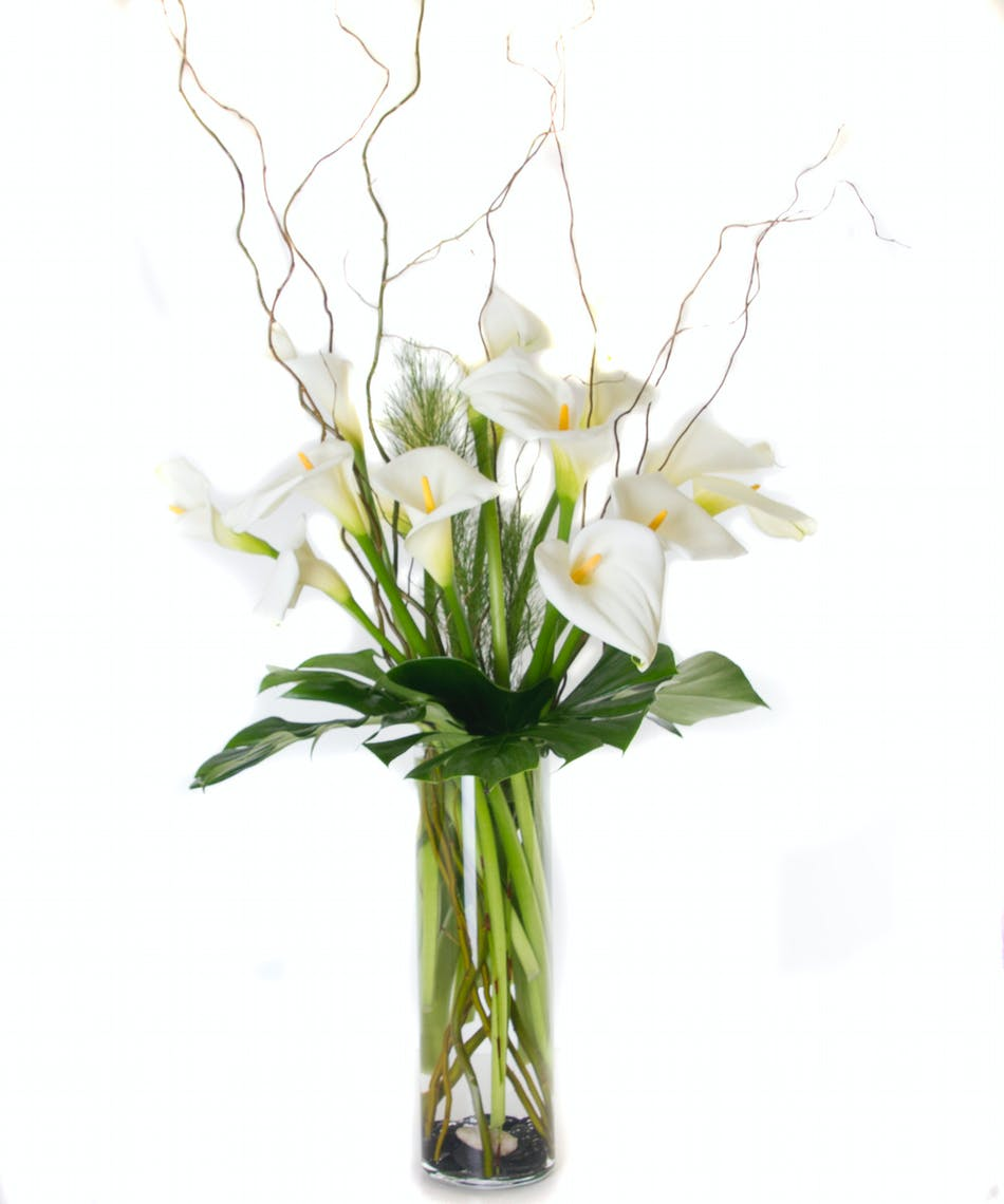 Serene Calla Lilies Rochester Sympathy Flowers