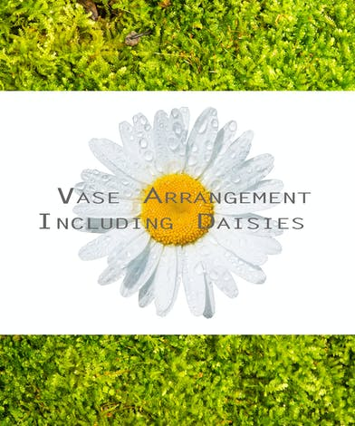 Image of daisy with text that reads