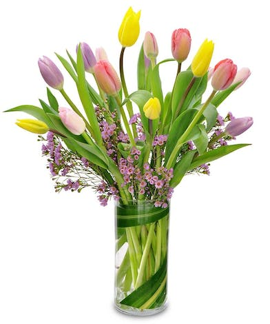 Bouquet of mixed colored tulips with wax flower accents