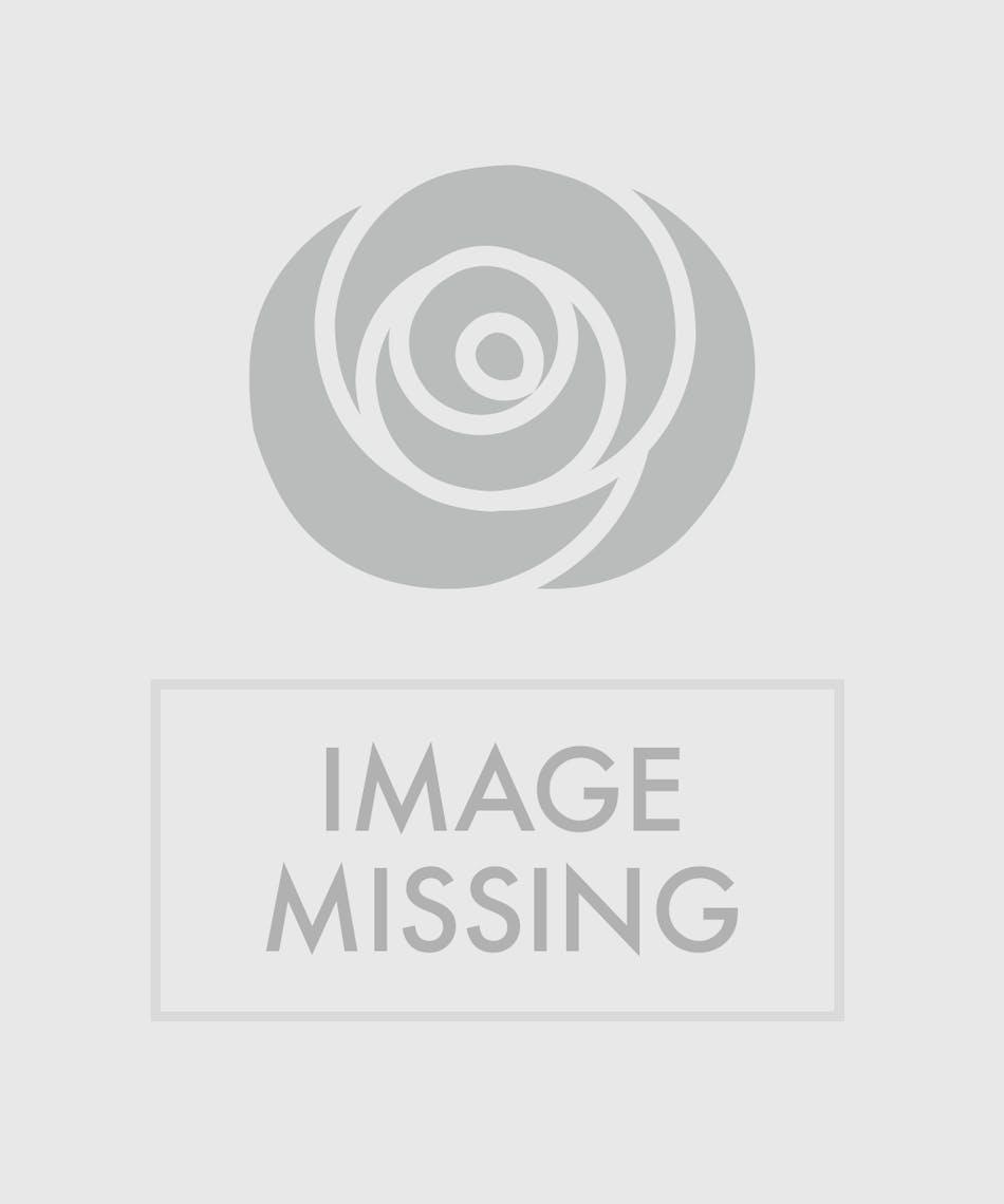 Designer\'s Choice Gerbera Daisy Vase | NY Florist