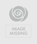 Valentine's Arrangement