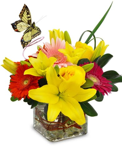 Bright red and yellow flowers in a clear glass cube vase with butterfly decoration.
