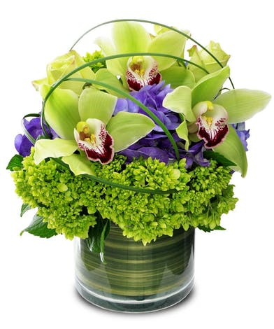 Green cymbidium orchids in a cylinder vase with hydrangea and bear grass loops.