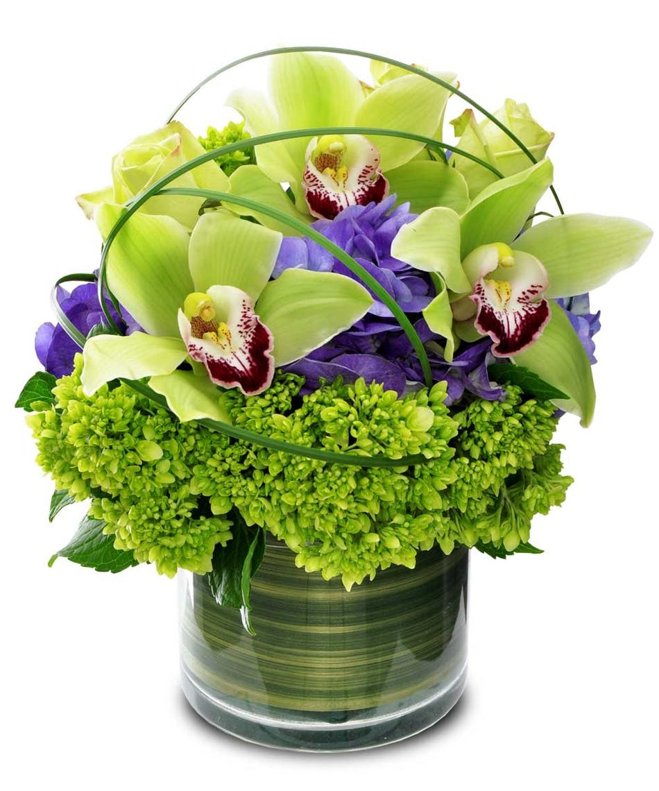 Cymbidium delight rochester ny orchid delivery green cymbidium orchids in a cylinder vase with hydrangea and bear grass loops izmirmasajfo