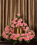 Pink Carnation Memorial