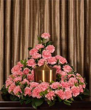 Sympathy arrangement of pink carnations to surround an urn.