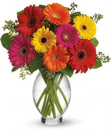Gerbera daisies in an assortment of colors in a clear glass vase.