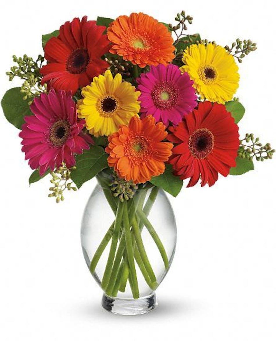 Gerbera Brights Daisy Bouquet Kittelberger Florist Ny