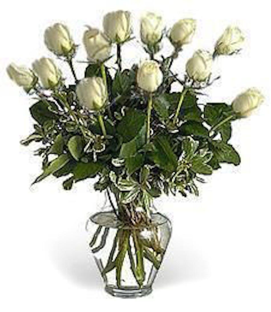 Dozen White Roses Kittelberger Ny Florist