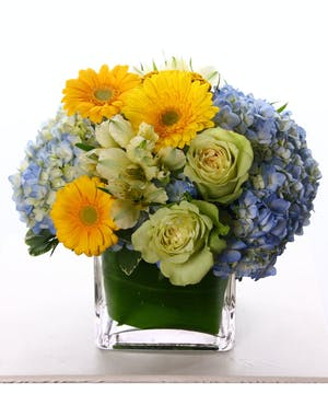 A Welcome Baby Boy Arrangement