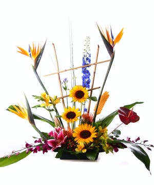 A Tropical Paradise Arrangement