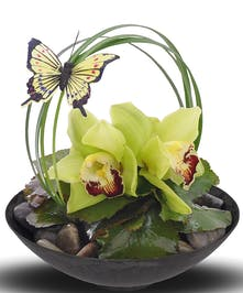 Enchanted Butterfly Bowl