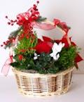 Christmas Combination Basket