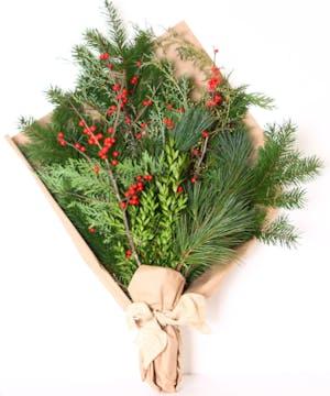 Wrapped premium winter greens including pine, boxwood, cedar and ilex berries.