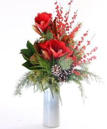 Red Amaryllis Classic