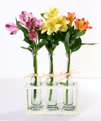 Three bud vases with alstroemeria in assorted colors.
