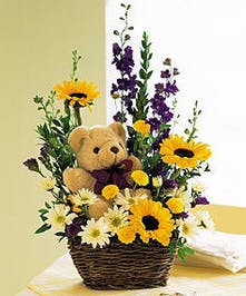 Assorted Fresh Cut Flowers & Teddy Bear Gift