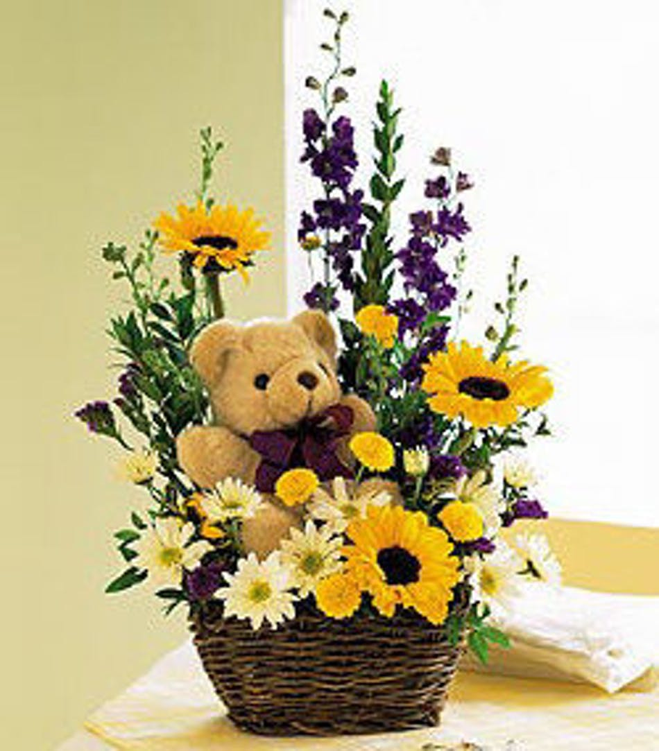 Sunflower Teddy Bear Gift Kittelberger Florist Ny