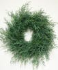 Carolina Saphire Wreath